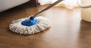 buy hardwood floor mop